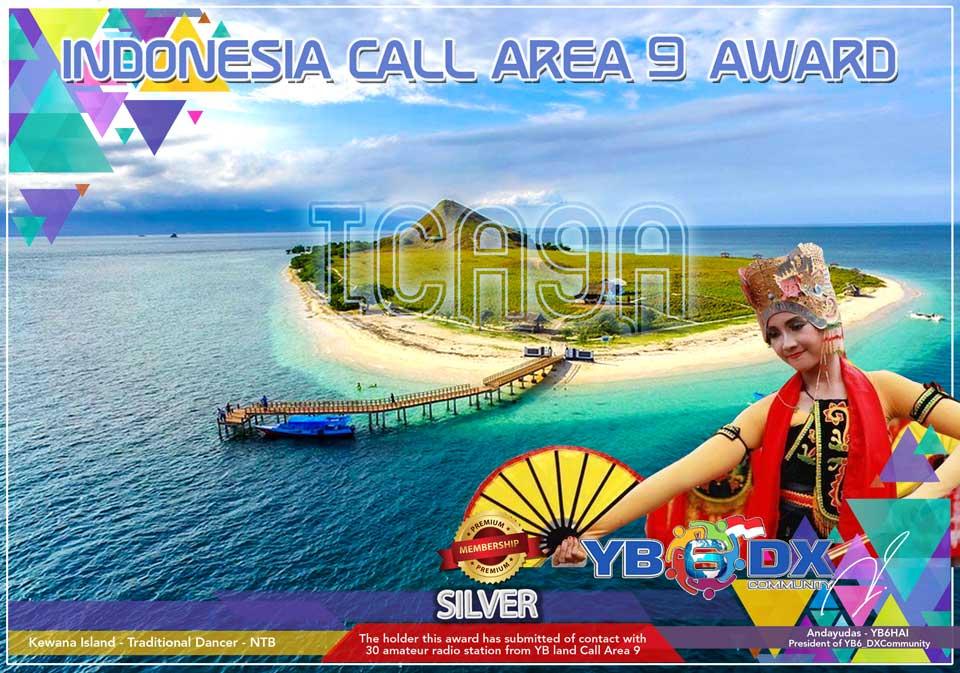 ICA9A Award Silver